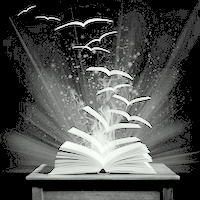 The magical world of reading