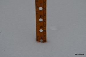 snow storm 2014 cove walk and shovel 004