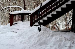 snow storm 2014 cove walk and shovel 028